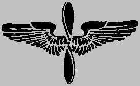 WWI winged propeller badge serves as branch insignia for Aviation