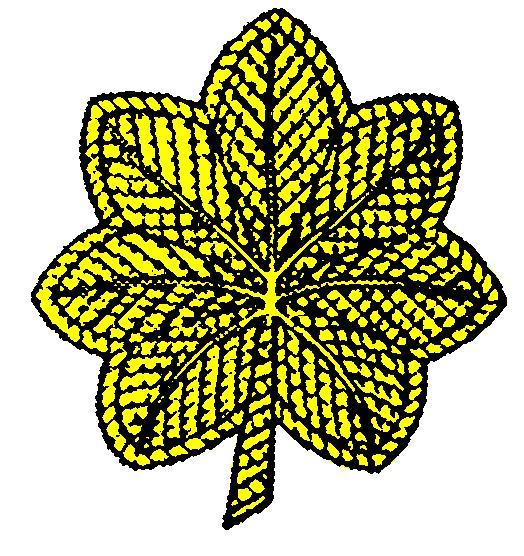 military insignia clipart - photo #23